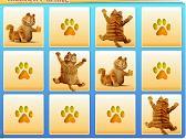 Mémoire - Garfield