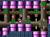 Nuevo Super Mario World - 3
