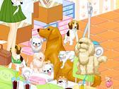 Café para Perros y Mascotas